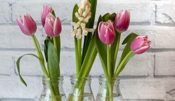 Przygotuj swój dom na wiosnę